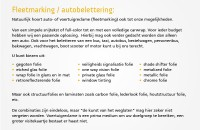 over_fleetmarking_autobelettering